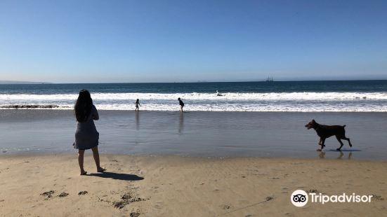 Gator Beach, Coronado, CA