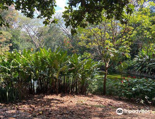 ホアキン・アントニオ・ウリベ植物園