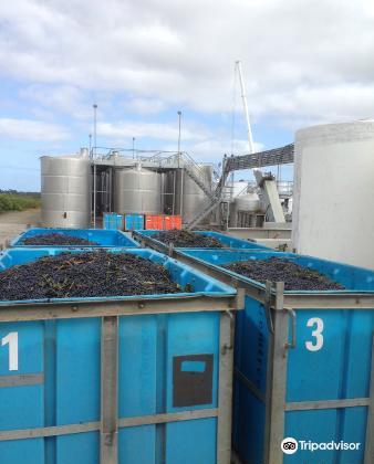 Kangarilla Road Winery