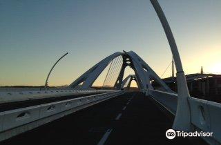 Toyota Bridge