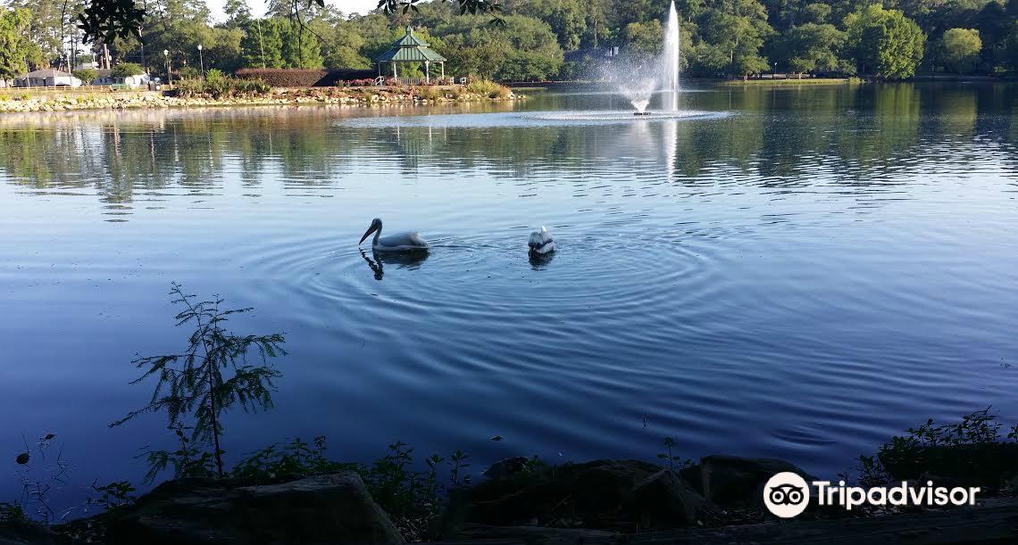 Lake Ella & Fred Drake Park