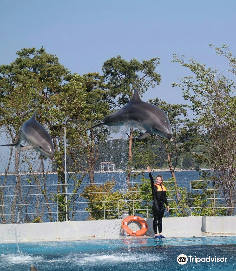Geoje Sea World
