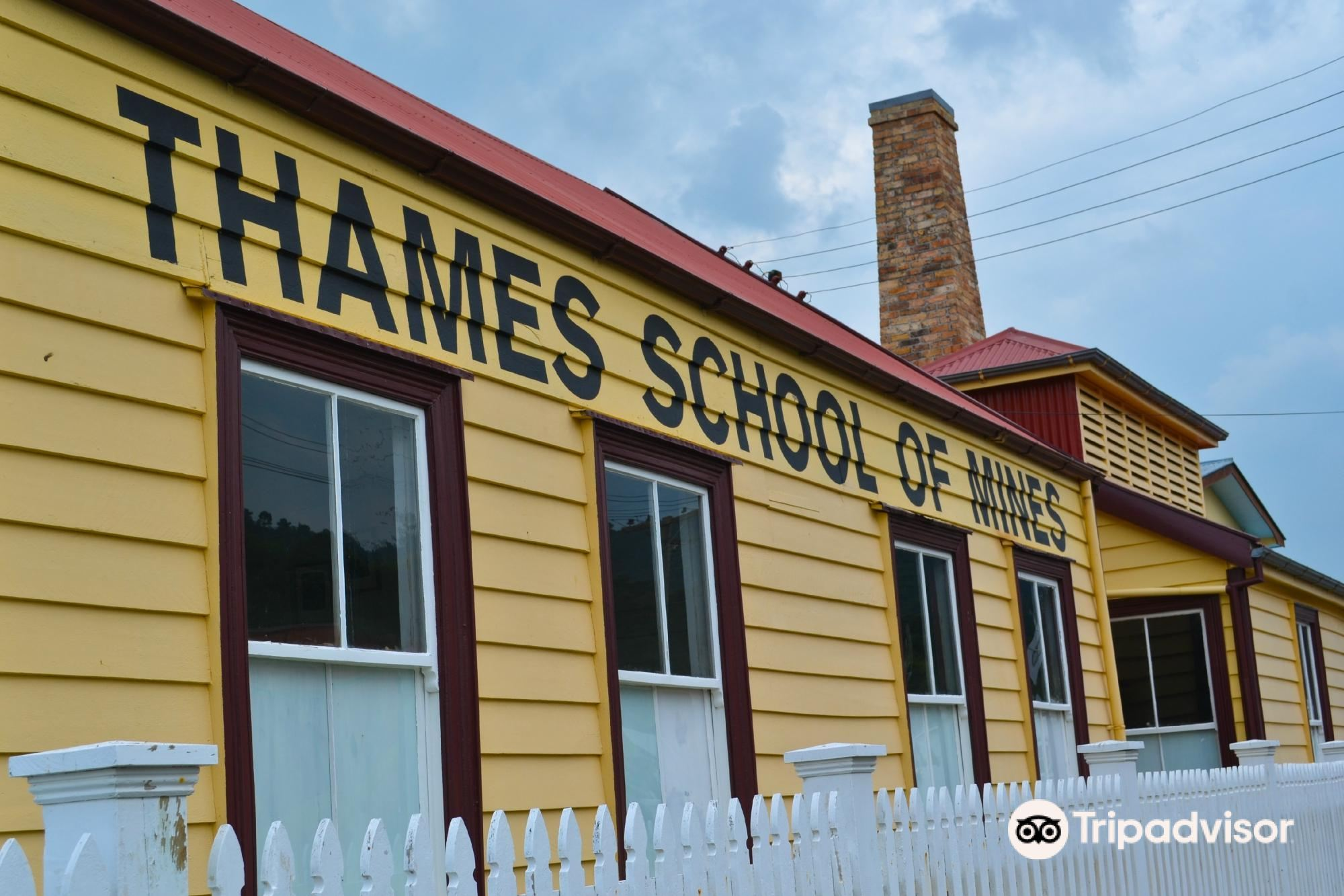 Thames School of Mines and Mineralogical Museum