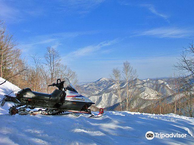 Snowmobile Land
