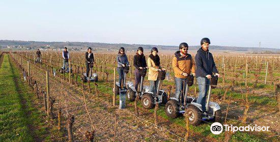 La Chevallerie - Gaëtan BRUNEAU wines
