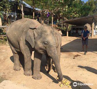 大象修養公園