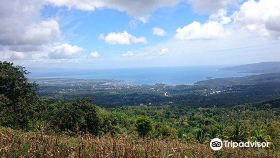 Nature in Zamboanga Peninsula