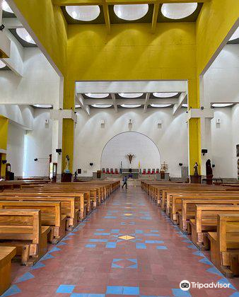 Catedral Metropolitana Inmaculada Concepcion de Maria