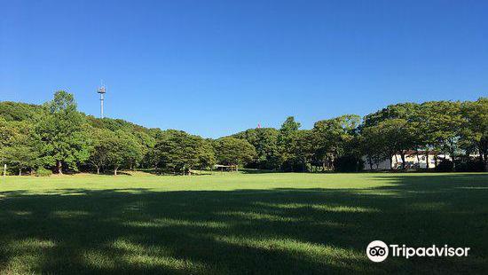 Shiroyama Ryokuchi Park (Remains of Kurosaki Castle)
