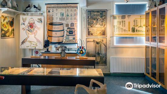 The Holberg Museum - Bergen City Museum