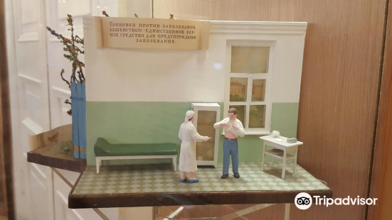 Museum of Hygiene (Muzei Gigieny)