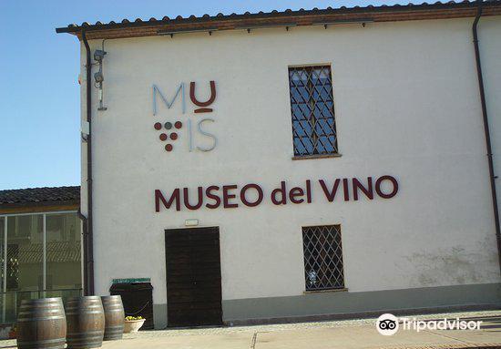 MUVIS - Museo del Vino