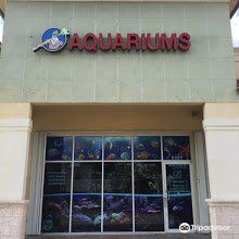 Southwest Seas Aquariums