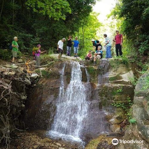 迪萊克半島國家公園