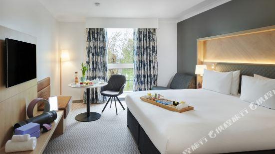倫敦克羅伊登希爾頓酒店