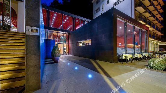 盧塞恩西伯格瑞士品質酒店