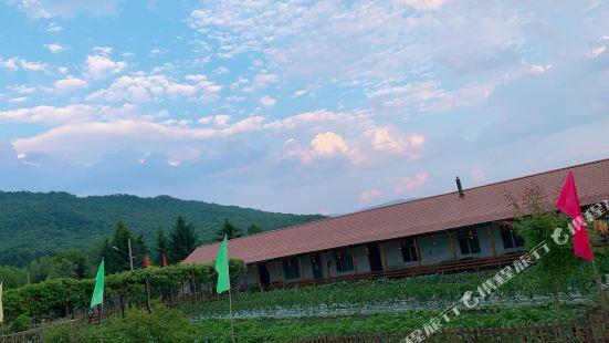 海林二龍農家院