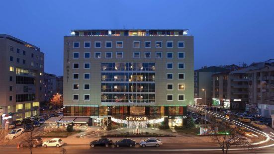 安卡拉城市酒店