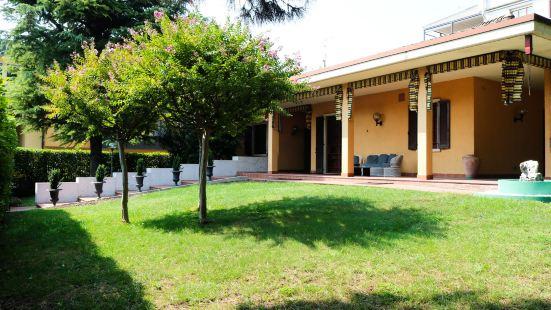 Vitti's Home Verona
