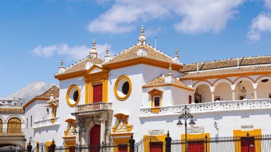 Petit Palace Puerta de Triana