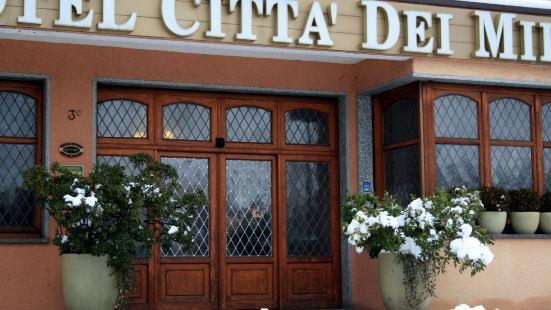 齊塔德米雷酒店
