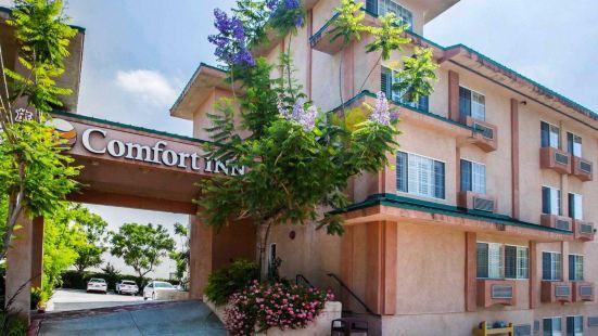 蒙特雷公園-洛杉磯舒適酒店