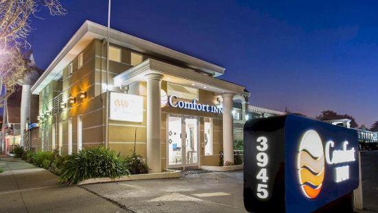 Comfort Inn Palo Alto