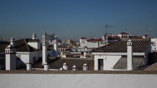 Black Swan Hostel Sevilla