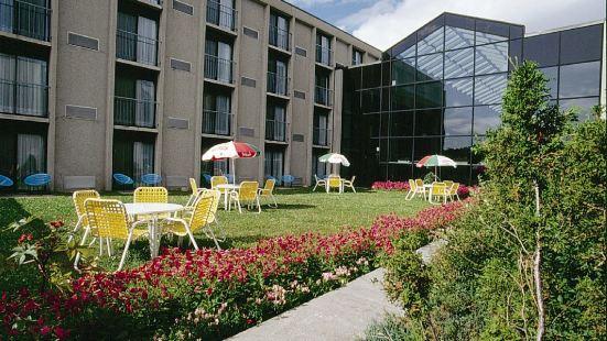拉薩基內納國會和酒店中心
