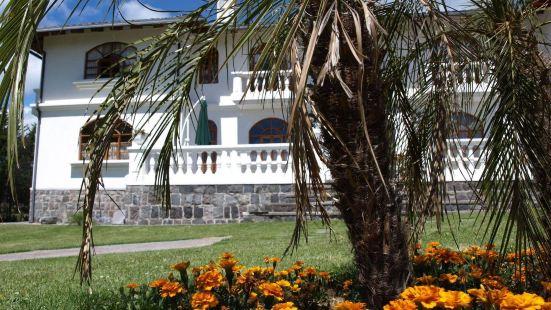 Hotel Villa DaFiore