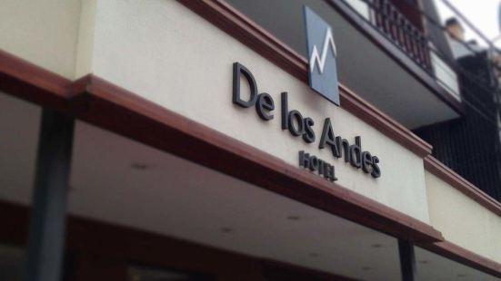 德洛斯安第斯酒店