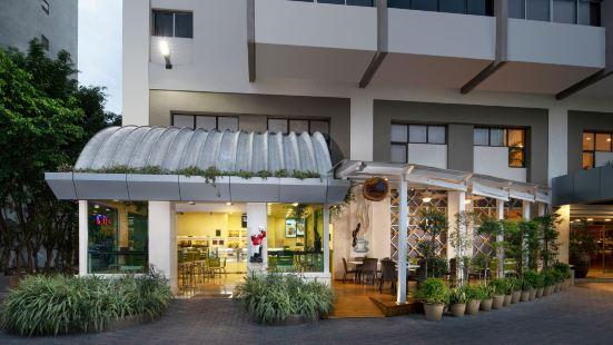 聖多明戈麗笙酒店