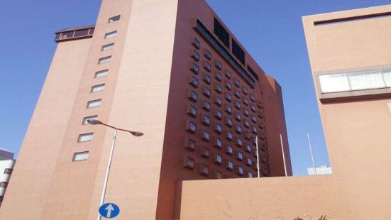 鳥取新大谷酒店