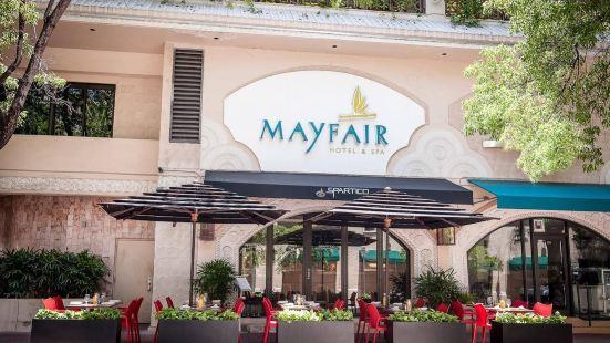 The Mayfair at Coconut Grove