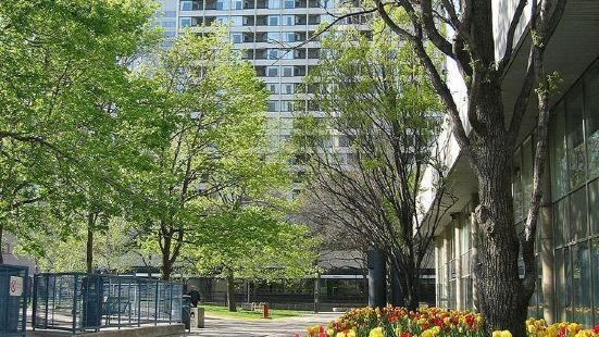 Chestnut Residence and Conference Centre - University of Toronto