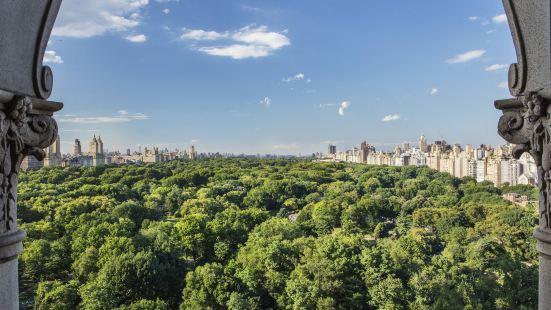The Ritz-Carlton New York, Central Park