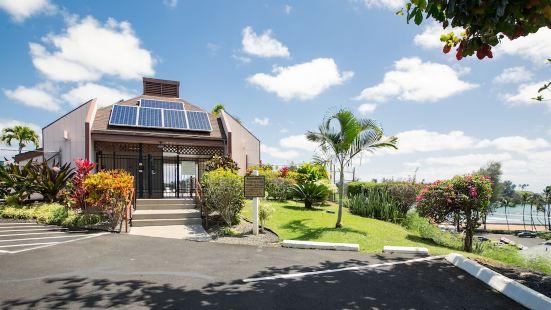 Kauai Banyan Harbor by Coldwell Banker Island Vacations