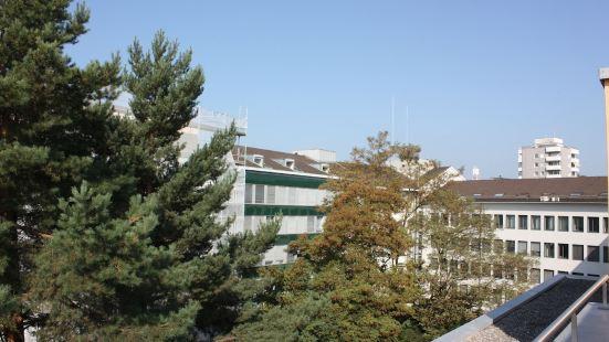 瑞士之星11區公寓