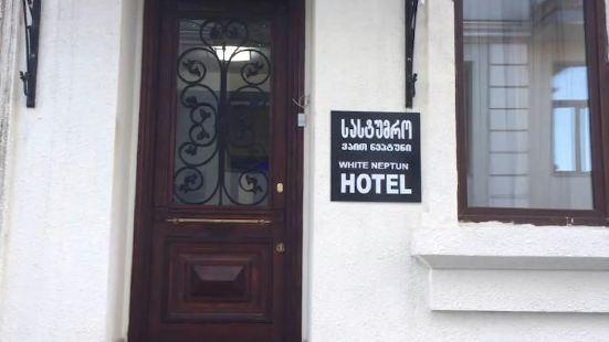 格魯吉亞第比利斯白尼普頓酒店